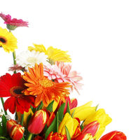 Bouquet of tulips and gerberas