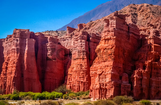 Giants of Quebrada de Cafayate