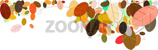 leaves foliage fall autumn illustration