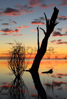 Sunset and silhouettes over the lake