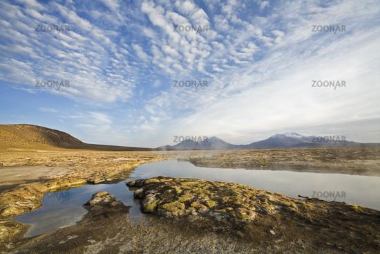 Thermal springs, salt lake Salar de Surire, Chile