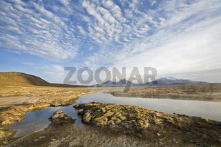 Thermalquellen Polloquere am Suedrand des Salzsees Salar de Surire, NP Reserva Nacional Las Vicunas, Chile, thermal springs, salt lake Salar de Surire, Chile