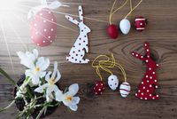 Sunny Easter Decoration, Crocus, Bunny And Eggs