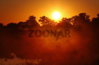 Sonnenaufgang im Susuwe Nationalpark, Namibia