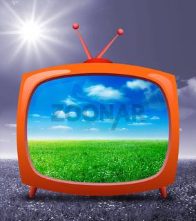 TV ecology
