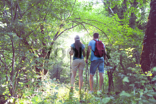 Backpackers in the forest