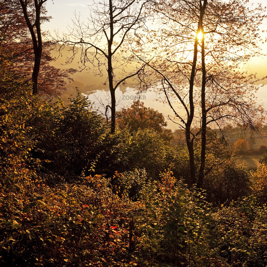 Schlakenmehren maar in autumn at sunrise, Daun, Eifel, Rhineland-Palatinate, Germany, Europe