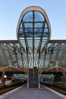 Bahnhof Liege Guillemins Lüttich Station Santiago Calatrava ICE Zug Hochformat Belgien