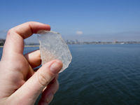 Hand Holding Up a Piece of Sea Glass