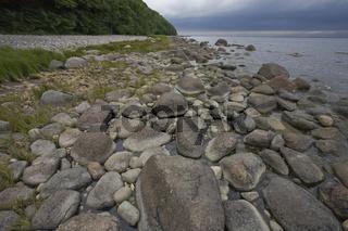Nationalpark Jasmund, Steinstrand, Lohme, Insel Ruegen, Jasmund national park, Stone Beach