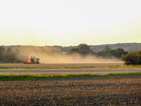Cereal crops in Germany