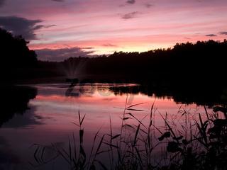 Sonnenuntergang über dem Prerow Strom