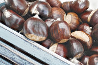 Close up of a wooden box with fresh raw chestnuts.