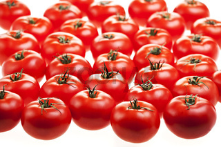 lots of tomatoes isolated on white
