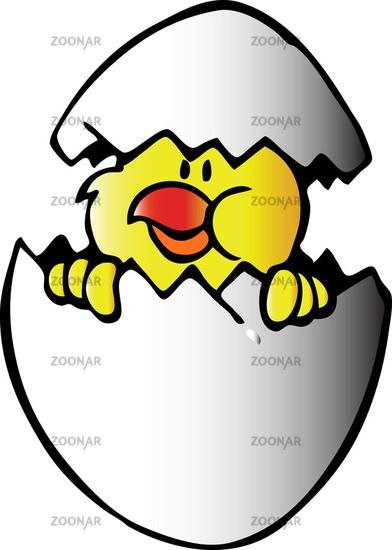 Chicken in egg. Vector illustration