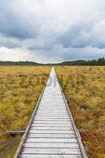 Hiking trail to a wooden footbridge across a bog