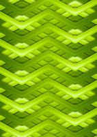Bright green smooth stripes background