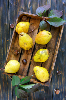 Yellow pears and chestnuts in an old box.