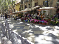 Flower Shop in the promenade from Palma de Majorca