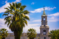 Cathedral of Arequipa at plaza de Armas with Palm trees, Peru