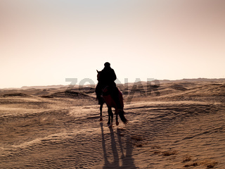 Douz, Tunisia, Arabian knight in the desert at sunset