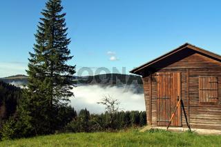 oberhalb von bernau im suedschwarzwald