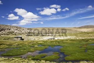 Berglandschaft mit Thermalbad am Rundweg der Conaf Station Las Cuevas, Lauca NP, Chile, mountain landscape with hot springs