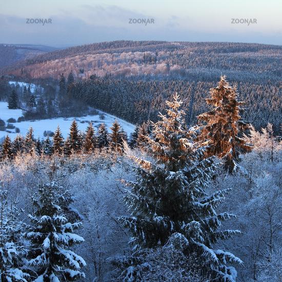 Rothaar Mountains in winter, Hilchenbach, Siegerland, North Rhine-Westphalia, Germany, Europe
