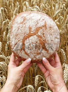 Frisches Brot mit Händen