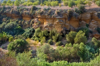 Gardens in the Valley of the Temples in Agrigento