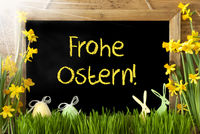 Sunny Narcissus, Egg, Bunny, Frohe Ostern Means Happy Easter