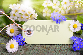 paper card for present