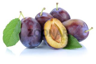 Zwetschgen Pflaumen Zwetschge Pflaume geschnitten Blätter Früchte Frucht Obst Freisteller freigestellt isoliert