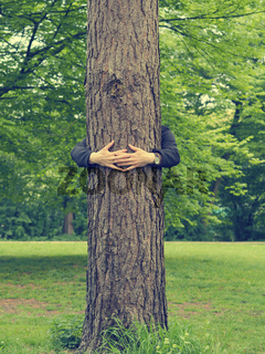 Man hugs a big tree