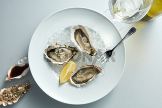 Seafood. Delicious oyster with lemon