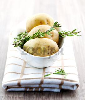 frische Kartoffeln und Rosmarin / fresh potato and fresh rosemary