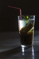 chilenisches Mote con Huesillos Getränk