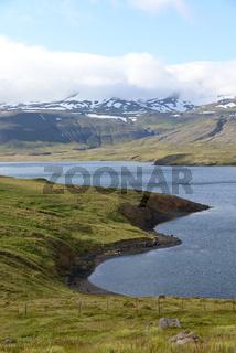 Küste am Breidafjördur, Island