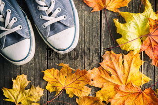Shoes and autumn leaves.