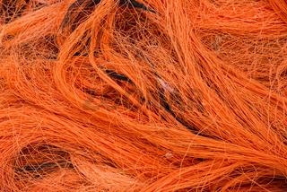 Orange and Black Net