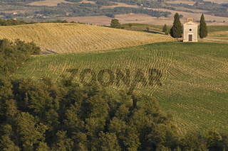Kapelle in der Crete, Val d' Orcia, Toskana, Smal chapel, Crete, Tuscany, Italy