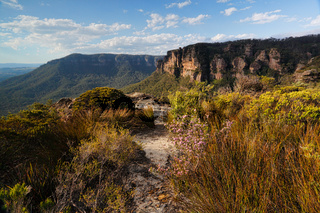 Walking track in Blue Mountains Australia