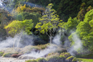 Fumarolen bei Caldeiras Das Furnas, Azoren