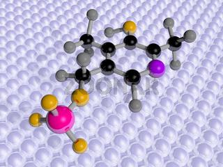 Molecular Science Vitamin B6