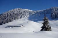 Marvelous Winter Day in Bavaria, alpine cabin