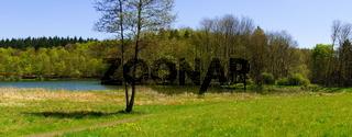 Holzmaar Panorama