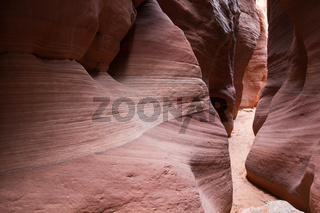Wire Pass Slot Canyon 6