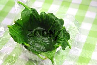 Spinat, Pochieren von Ei in Spinat