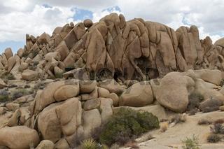 Jumbo Rocks 3