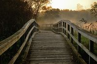 Wooden Foot Bridge in the Early Morning